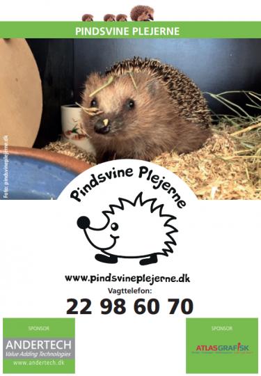pp-voksen